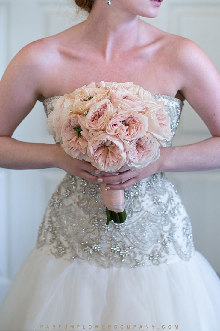 David Austin Wedding rose Charity 006