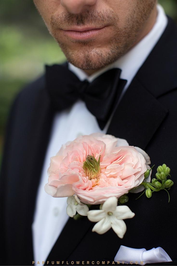 David Austin Wedding rose Charity 010