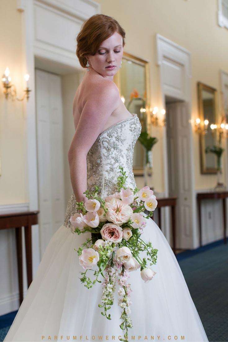 David Austin Wedding rose Charity 012
