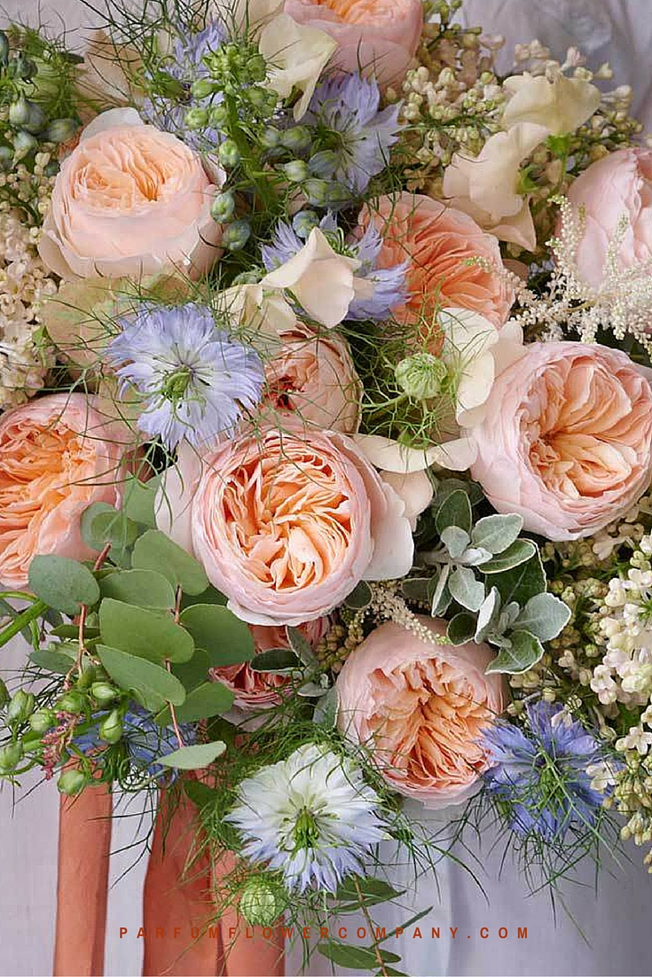 Peach David Austin wedding Rose Juliet 013