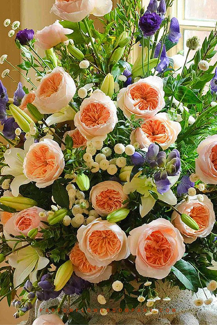 Peach David Austin wedding Rose Juliet 016