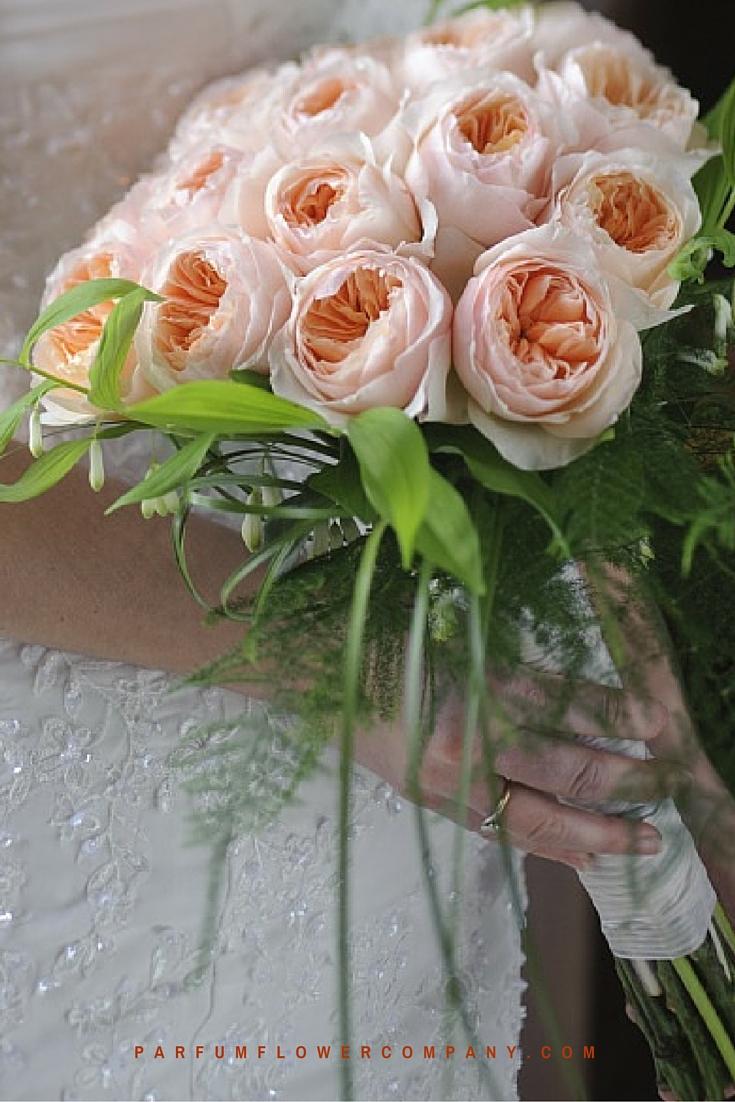 Peach David Austin wedding Rose Juliet 018