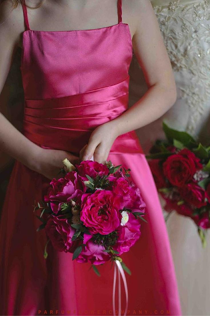 David Austin Wedding rose Kate 017