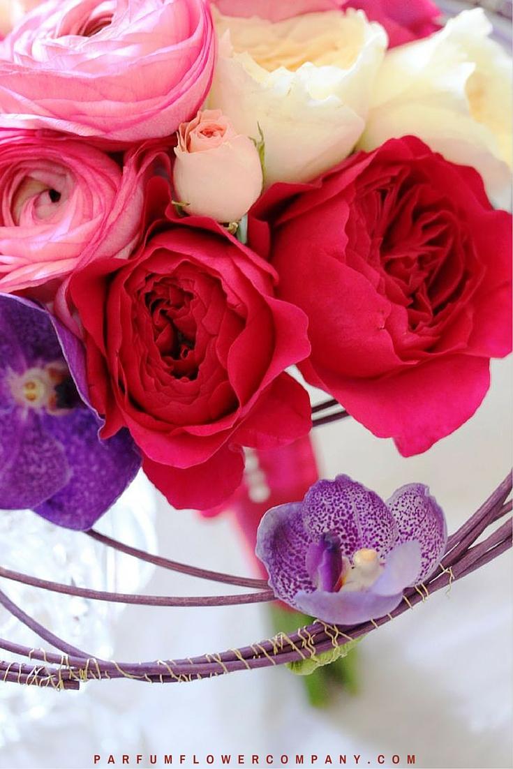 David Austin Wedding rose Kate 018