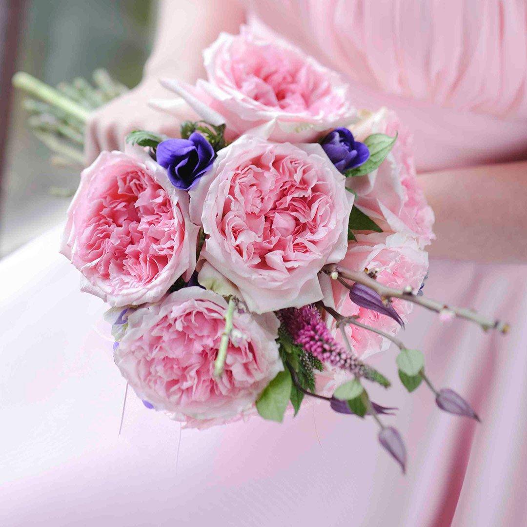 Пионовидные розы картинки 5