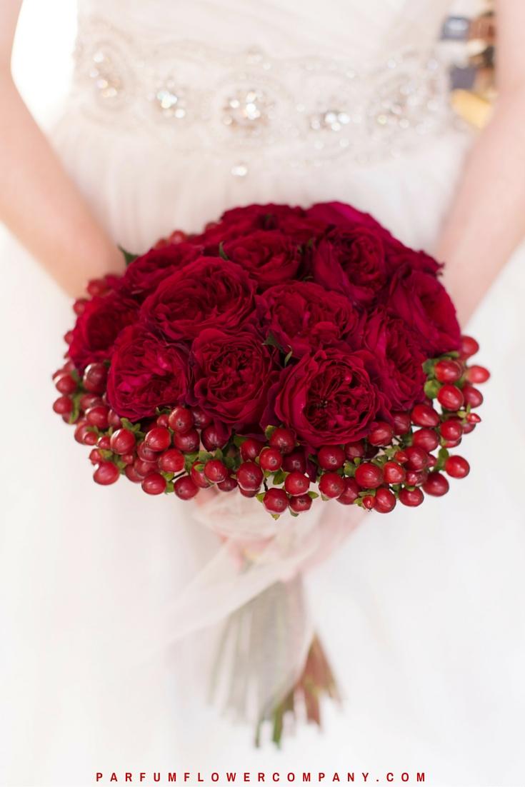 David Austin Wedding Rose Tess 015