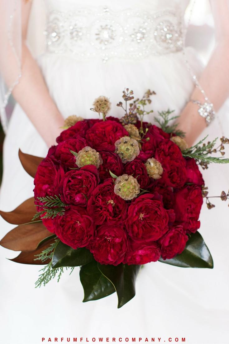 David Austin Wedding Rose Tess 016