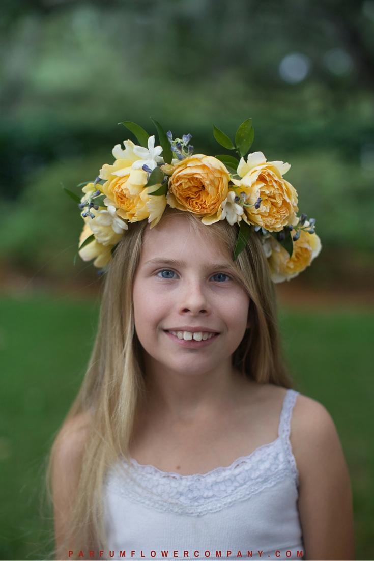 David Austin Wedding Rose Beatrice 016