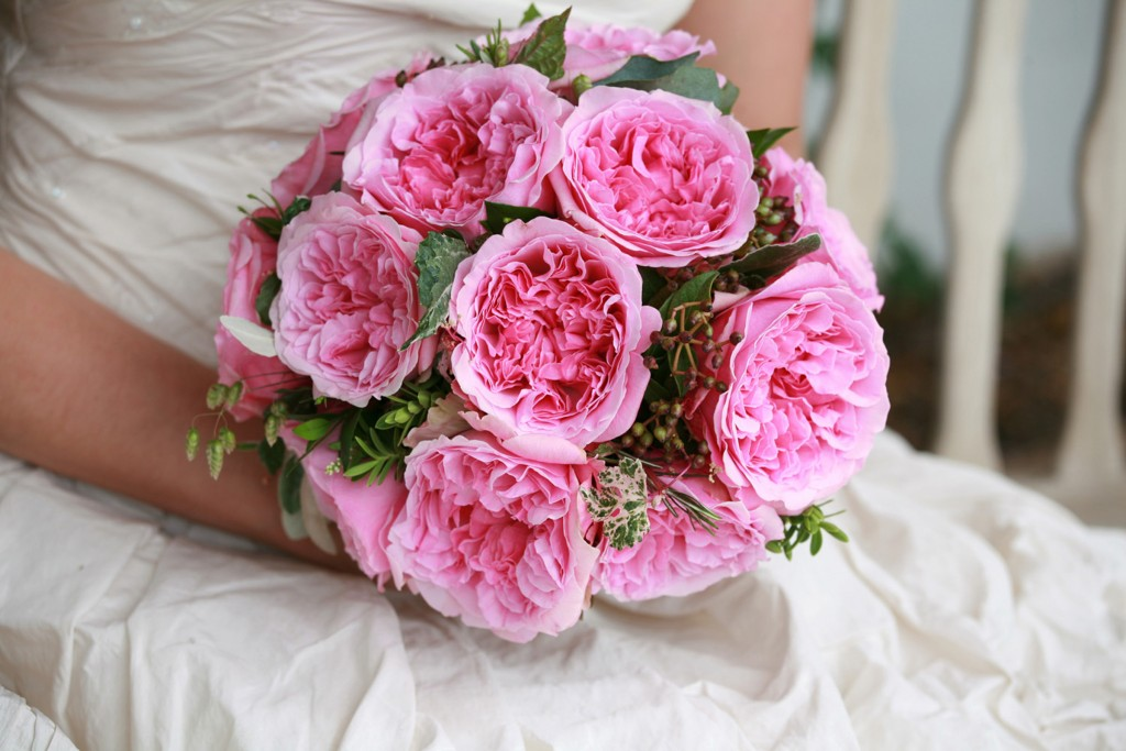 the top 5 david austin wedding roses parfum flower company. Black Bedroom Furniture Sets. Home Design Ideas
