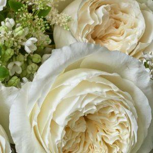 The top 10 david austin wedding roses parfum flower company david austin wedding rose juliet mightylinksfo