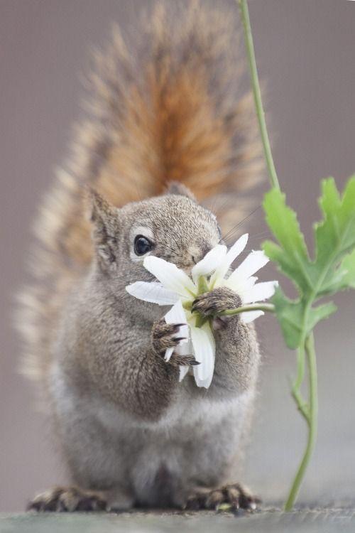 Hmm...it smells so good!