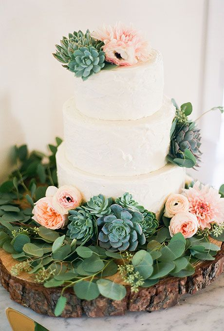 Succulents on a wedding cake? I would have said no, but I changed my mind after seeing this cake!