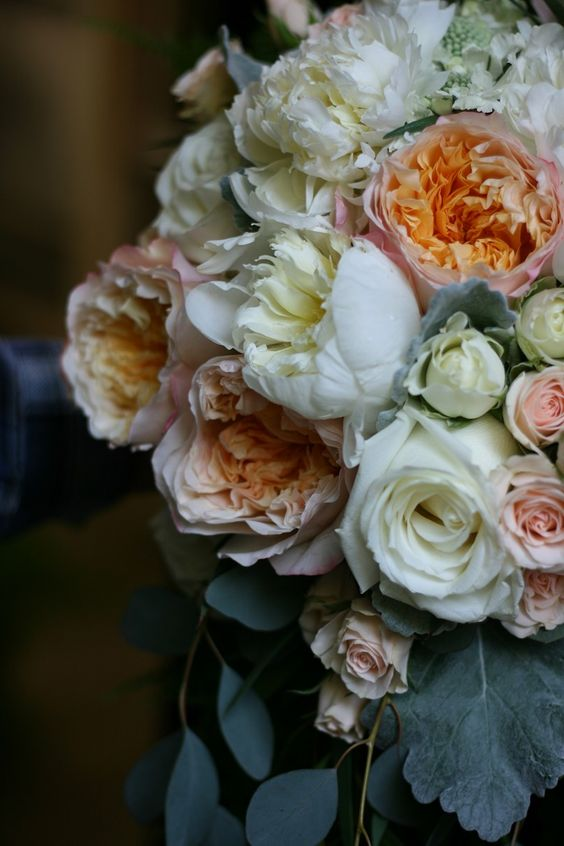 Semi-cascade bouquet with peonies, Edith David Austin roses, spray roses, dusty miller and eucalyptus.