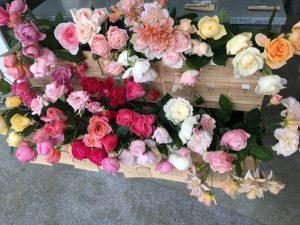 Wabara roses in Japan