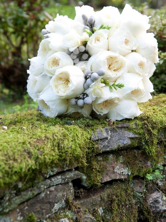 a beautiful white bouquet consisting of patience roses silver brunia and lisianthus - White Patience Garden Rose