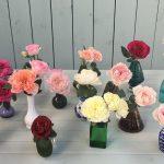 Hannah Gardens roses