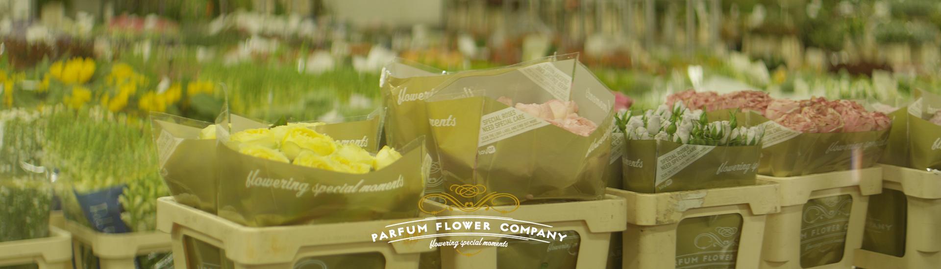 layer-slider-bloemen-in-fust-in-koeling