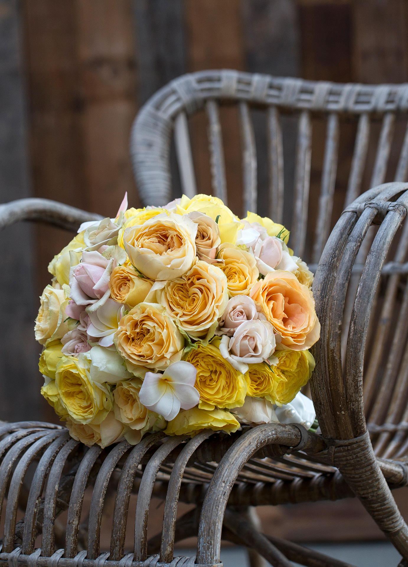 For a softer look and feel of your wedding bouquet, Caramel Antike is a definite must have!