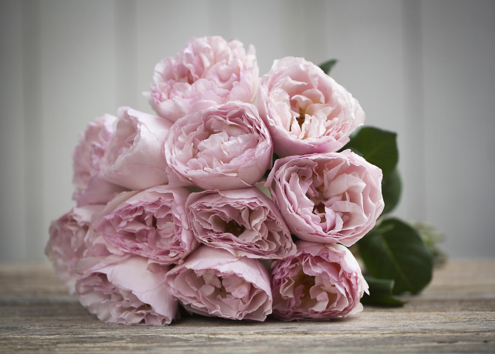 Princesse Charlene de Monaco scented roses