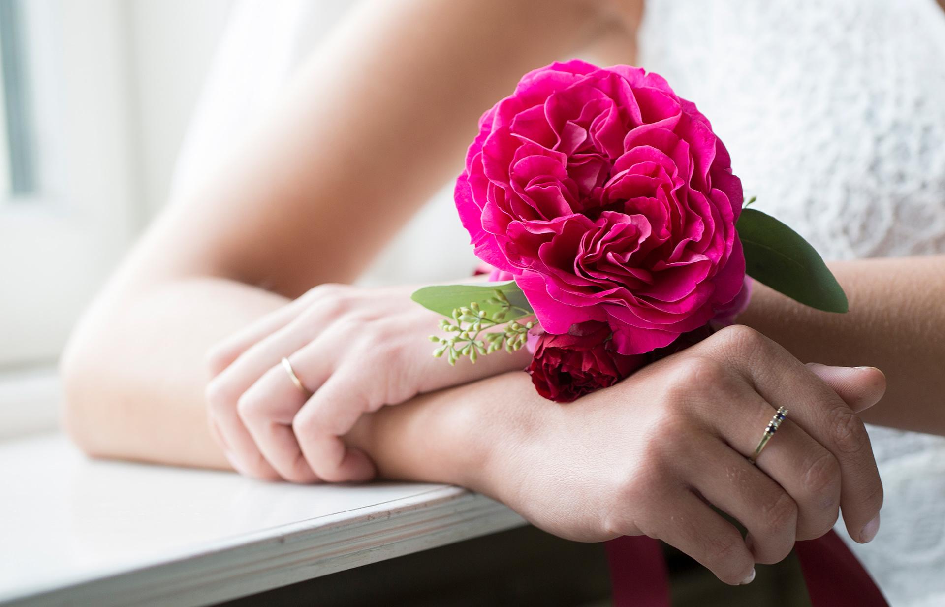 David Austin Kate scented roses